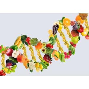 Генетичний паспорт харчування (10601)