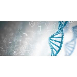 Генетичний паспорт (10735)
